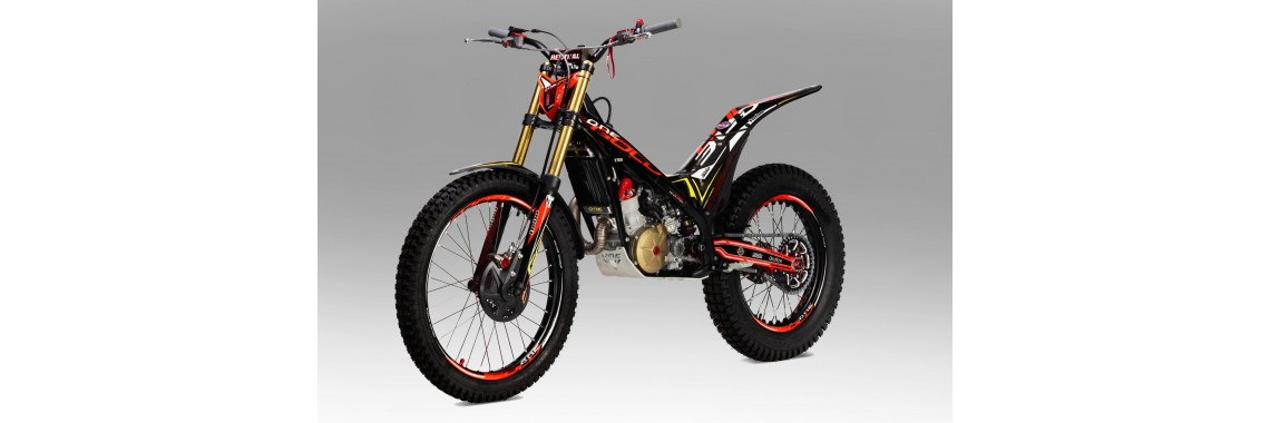 TRS Gold 2021